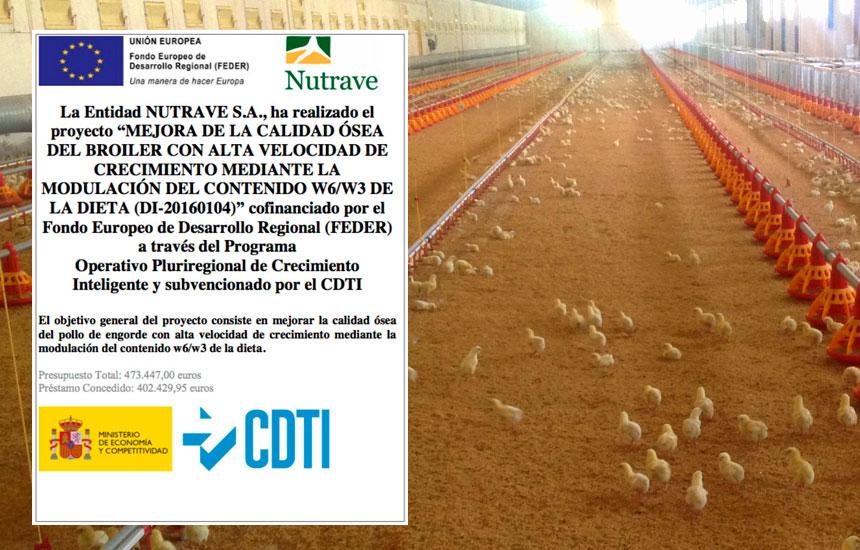Investigación en calidad del pollo Nutrave