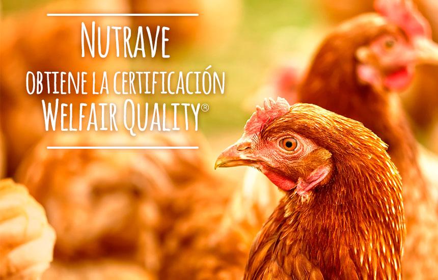 Nutrave consigue la certificación Welfair Quality en Bienestar Animal